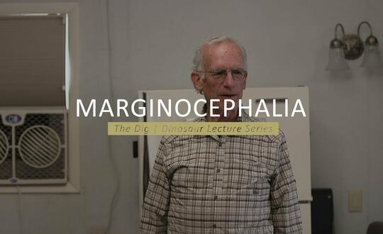 The Dig | Dinosaur Lecture Series - MARGINOCEPHALIA