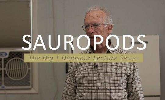 The Dig | Dinosaur Lecture Series - SAUROPODS